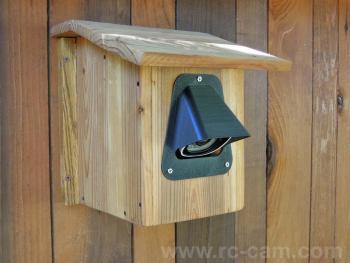 birdhouse1_1200.jpg