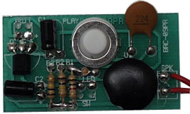 Bare Voice Module (from Radio Shack)